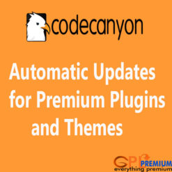 Automatic Updates for Premium Plugins and Themes