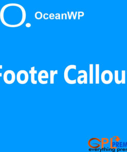Footer Callout